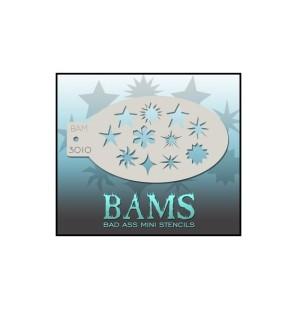 BAM 3010